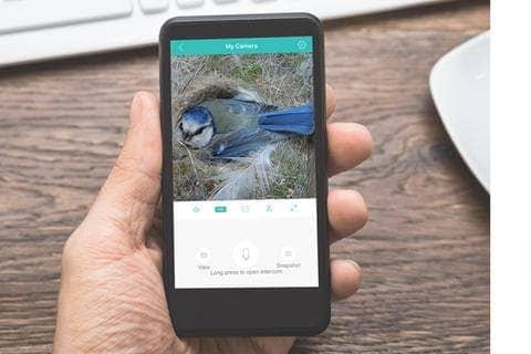Fågelholk med kamera