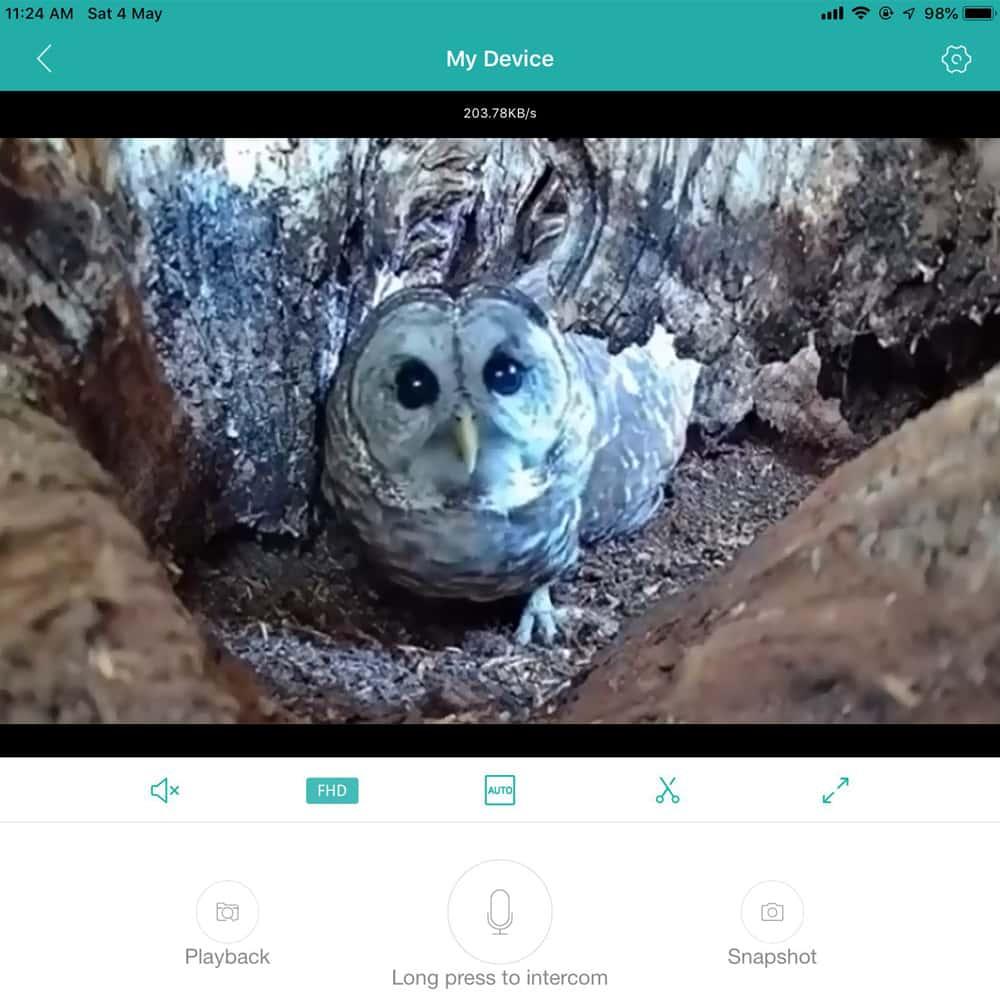IP Bird Box Camera