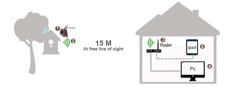 Wireless Bird Box Camera - Green Backyard